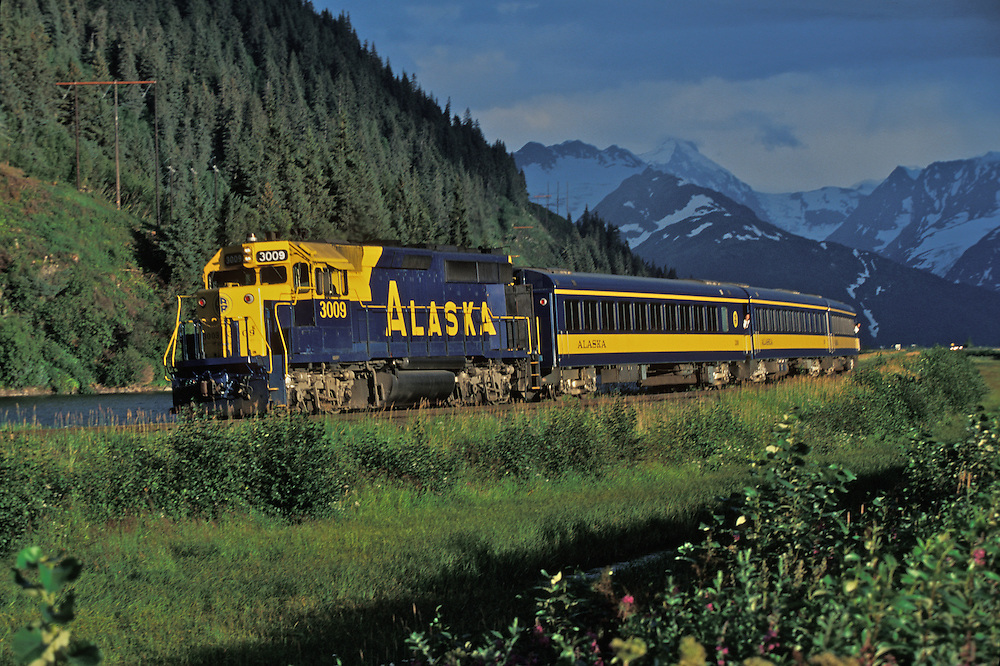 The Alaska Railroad makes its way toward Anchorage as it parallels the Sewars Highway just northy of Portage.
