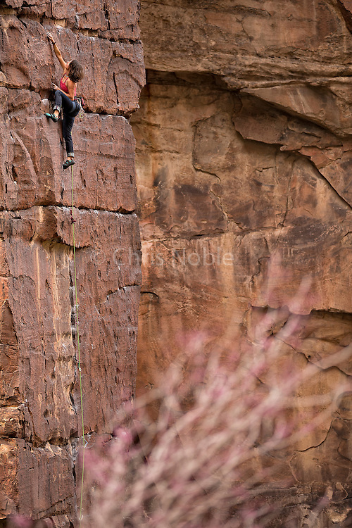 """Tracy Martin climbing the trad route """"Spring Break"""" 11d in Icebox Canyon, Red Rocks."""