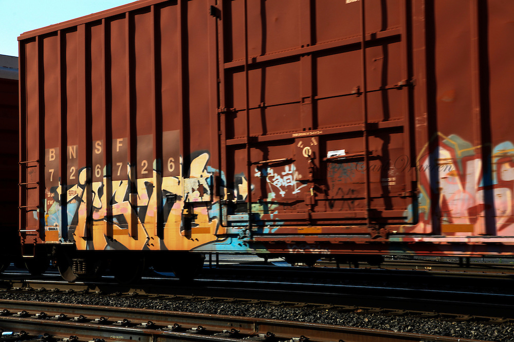 Train Graffiti of the Pacfic Nortwest