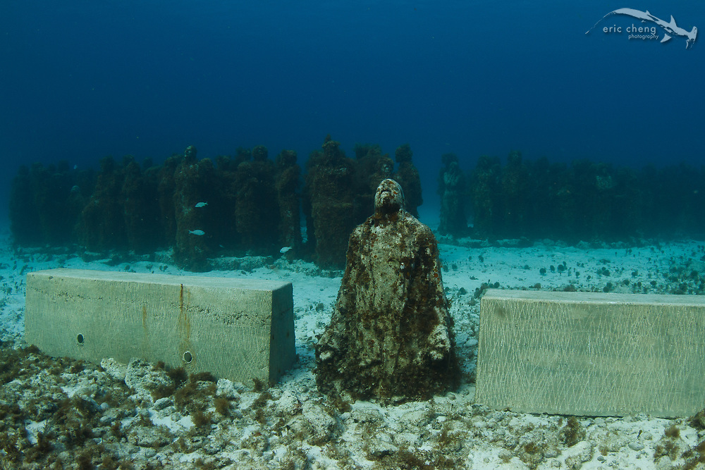 Sculptures by Jason deCaires are sprinkled off the coast of Cancun. MUSA collection. Mexico