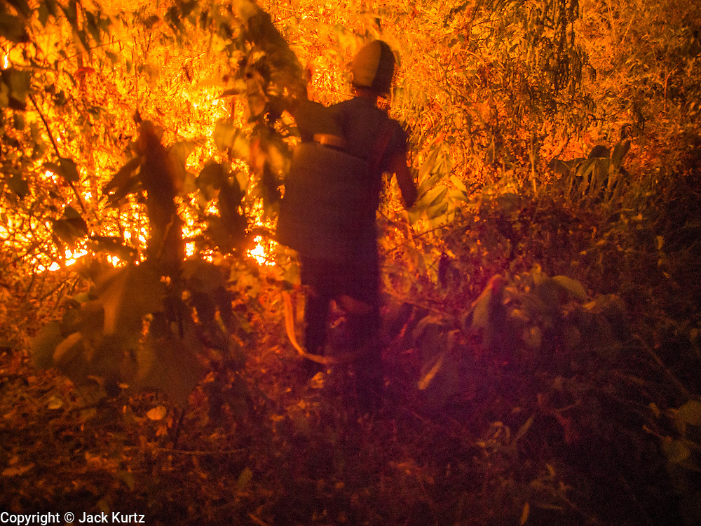 "24 APRIL 2014 - CHIANG SAEN, CHIANG RAI, THAILAND:  A firefighter tries to attack a wildfire that was started by a farmer clearing his land in Chiang Rai province, Thailand. Farmers in Thailand and neighboring Laos and Myanmar still practice ""slash and burn"" agriculture, burning out their fields in February, March and April before the start of the rainy season. The Thai government is trying to put a stop to the practice in Thailand but farmers continue to burn. Chiang Rai province in northern Thailand is facing a drought this year. The 2014 drought has been brought on by lower than normal dry season rains. At the same time, closing dams in Yunnan province of China has caused the level of the Mekong River to drop suddenly exposing rocks and sandbars in the normally navigable Mekong River. Changes in the Mekong's levels means commercial shipping can't progress past Chiang Saen. Dozens of ships are tied up in the port area along the city's waterfront.                   PHOTO BY JACK KURTZ"