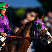 June 07, 2014:  California Chrome and Victor Espinoza at the Belmont Stakes at Belmont Park in Elmont New York. Alex Evers/ESW/CSM