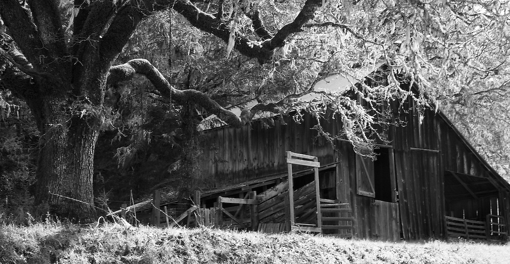 Old weathered barn black and white wide angle shot in northern California near Fortuna.