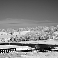 Rural Kentucky horse pasture land.  Infrared (IR) photograph by fine art photographer Michael Kloth.