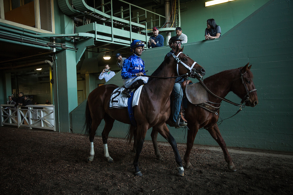 December 26, 2015:Marking and Jose Lezano up at the Malibu Stakes at Santa Anita Park, Arcadia CA. Evers/ESW/CSM