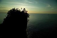 Hacia el mar abierto, se encuentra la Isla de los P&aacute;jaros (tambi&eacute;n conocido como Cayo Cisne), santuario de aves donde anidan la bella y rara Ave Tropical (Rabijunco Piquirrojo), de blanco plumaje, pico color naranja y, en los machos, una larga y vistosa cola, as&iacute; como el simp&aacute;tico alcatraz (piquero o bobo).<br /> <br /> Otras aves marinas, como el pel&iacute;cano, las gaviotas, los gaviotines y la fragata, pasan parte de su tiempo en el cayo.<br /> <br /> Mientras las aves tropicales usan los huecos en los acantilados para anidar, los alcatraces hacen sus nidos en el mismo suelo, por todas partes.<br /> <br /> Para no molestar a las aves, especialmente a los piqueros, no es permitido ni recomendado el desembarque en la isla.<br /> <br /> &copy;Alejandro Balaguer/Fundaci&oacute;n Albatros Media.