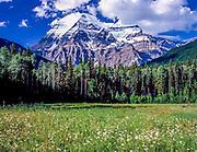 Lone Pine - Sierras 001