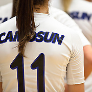 Womens Volleyball 2012/2013 season