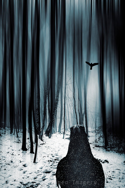 Surreal winter scnery with a raven - photomanipulation<br />
