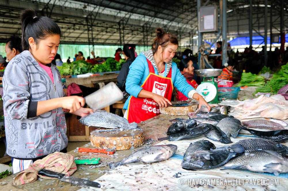 A young woman chops fresh fish at the morning market in Sam Neua (also spelled Samneua, Xamneua and Xam Neua) in northeastern Laos.