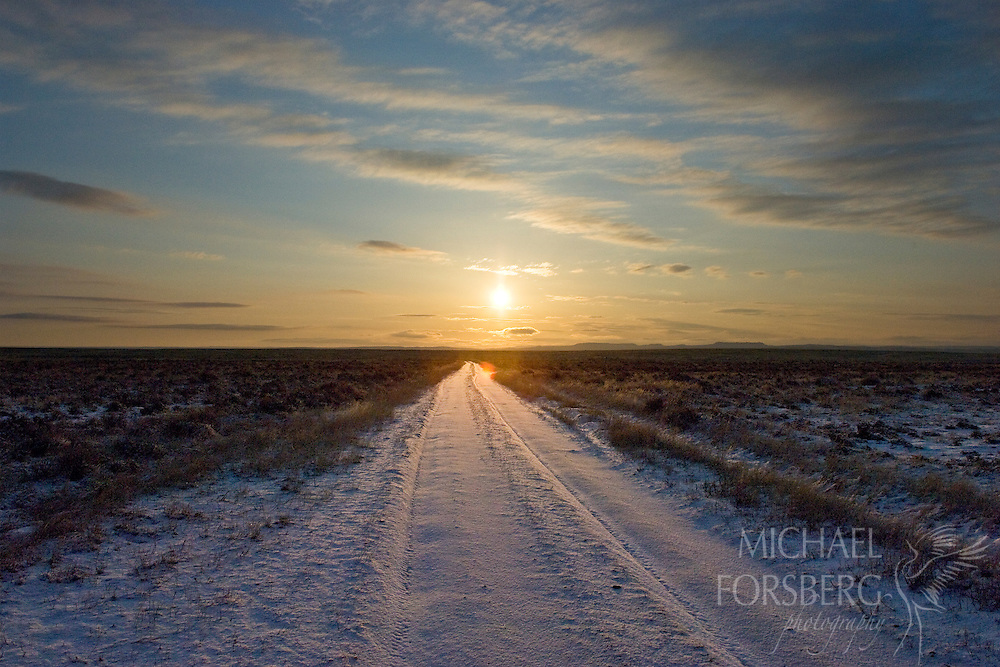 An icy sunrise over a frozen trail road.  Charles M Russell National Wildlife Refuge, Montana.