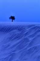 This photo Is a trick of perspective. The sand dune in the foreground is only 3 feet tall even though it looks gigantic.