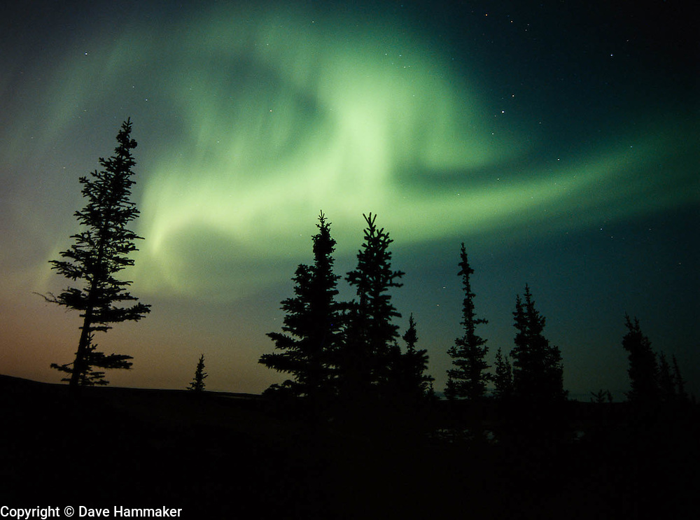 """""""Northern Lights at South Camp""""   Whitefish Lake, Northwest Territories, Canada"""