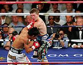 Pacquiao knocks out Hatton