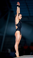 29th LEN European Swimming Championships<br /> Eindhoven, Netherlands<br /> March, 13-24 2008<br /> DIVING - WOMEN PLATFORM FINAL