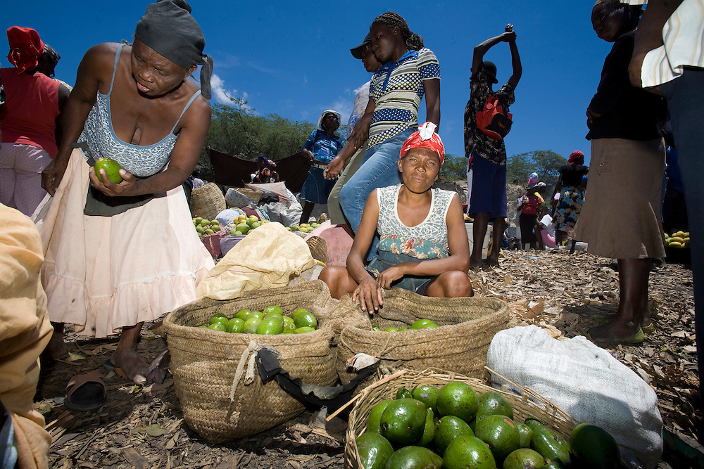 A woman Fonkoze microcredit client sells avacados in the market.