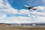Asiana Cargo jet taking off from Ted Stevens Anchorage International Airport in Southcentral Alaska with the Chugach Mountains in the background. Spring. Afternoon.