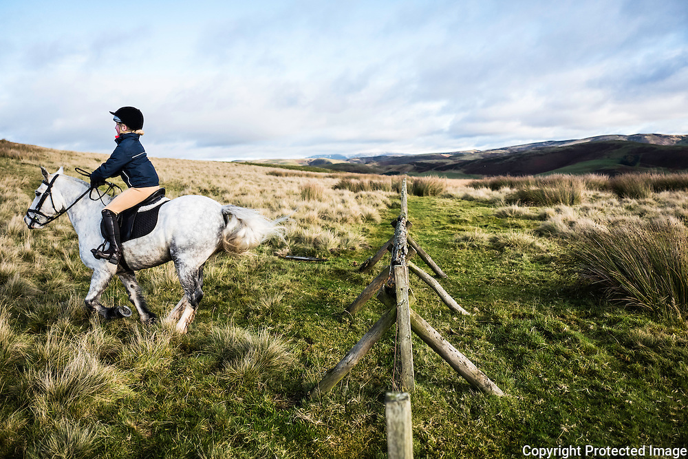 Jedburgh, Scottish Borders, UK. 12th November 2016. Robyn Crawford of Hawick sails over a hunt jump in the Border hills while hunting with the Jedforest Foxhounds.