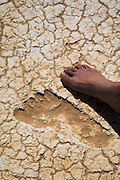 Pleistocene human footprints, Willandra Lakes Australia. A close up view of one foot print from a series of prints that Bond University Australian Studies professor Steve Webb believes could of be a one legged man or a man dragging something with one leg across what is believed to be a small wetland surface at the height of the last glacial period..