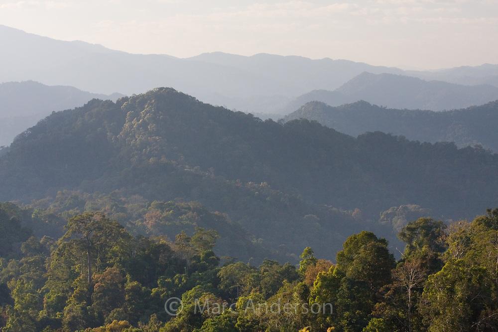 View of tropical rainforest and hills in Kaeng Krachan National Park, Thailand