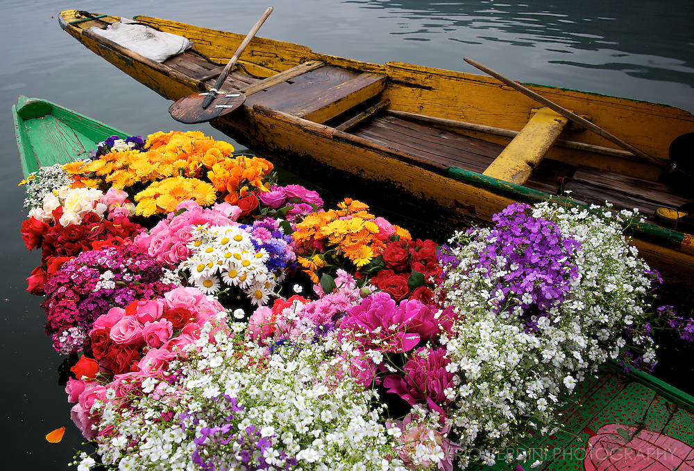 A flower seller boat docked on one canal of Dal Lake Srinagar. Kashmir. India
