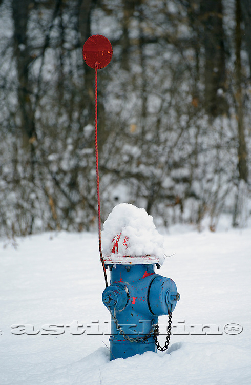 Blue Fire Hydrant in winter forest.