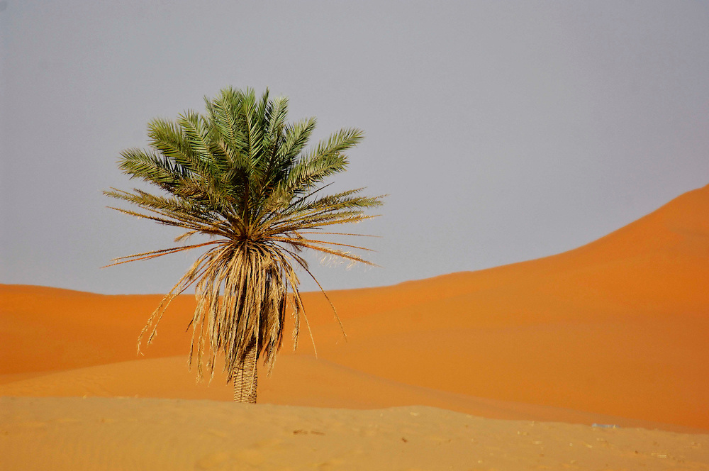 Erg Chebbi Sand Dunes, near Merzouga, Morocco