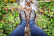 A hiker's perspective looking down at feet on a muddy, backcountry trail in the Talkeetna Mountains, near Palmer, Alaska.
