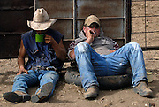 Adrian Shaw and Luke Shelley enjoy smoko, a well earned break, after working cattle onto a roadtrain, ready for shipping to Broome from Springvale Station, The Kimberley, Western Australia. 30 June 2006