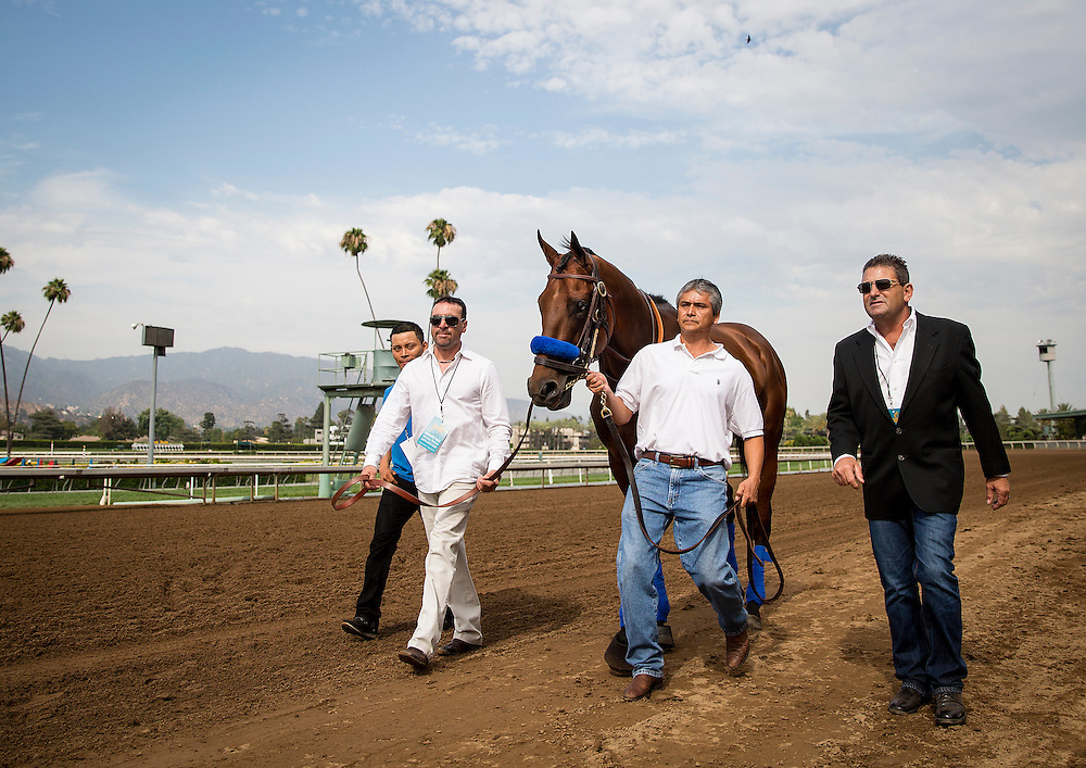June 27 2015: Scenes from the parading ofTriple Crown winner American Pharaoh at Santa Anita Park in Arcadia CA. Alex Evers/ESW/CSM
