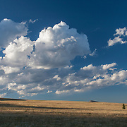 Windswept grasslands of Bald Ridge in the Shoshone National Forest Wyoming
