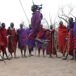French tourists from Toulousse, France visit a Maasai cultural center where they sing and dance for visitors willing to pay near the Ngornogoro Crater in Tanzania, November 10, 2003.  The Maasai were thrown out of the Crater in 1972 in the name of conservation and are being threatened again with further land loss under a torrent of new legislation. Like other indigenous people the world over, they continue to be evicted from their land in the name of tourism and conservation. They have lived on these lands for centuries but now struggle to survive on their borders, especially in the difficult drought years. Though they were able to live in harmony with the wildlife for centuries, the places with rich water sources are now preserved for tourists.  Eco-tourism, the government solution to chronic poverty, brings in vast revenues but sadly, the dispossessed Maasai are not allowed to benefit. Only a handful, mostly foreign owned tourist operators profit and only a tiny portion of the money actually filters through to the local economy. (Photo by Ami Vitale/Getty Images)