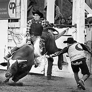 Bull Rider Patrick Sand rides Sweatheart, the bull.  Lilliooet Lake Rodeo, Mt. Currie, BC.  Near Pemberton