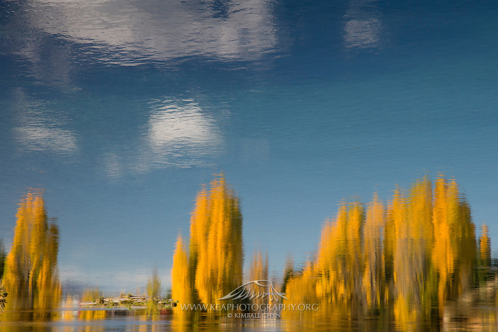 The impressionistic quality of lake and river reflections have always inspired artists.  On a unusually calm autumn day along the Clutha River, nature reflects its best rendition of an oil painting.