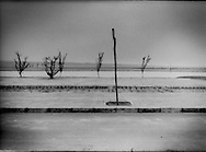 """Trees planted,  beside an artificial pond, to hold back a contiguous sand desert which extends from the Yellow River, hundreds of kilometres to the west, near Shapotou, Ningxia, China.  Beijing has laid down a line in the desert sand in a stuggle to halt the advance of the Gobi Desert called """"Taming the Yellow Dragon"""" as China's Environmental Agency says that the Gobi Desert expanded 52,400 square km. (20,240 square miles) from 1994 to 1999, about half the size of the state of Pennsylvania."""