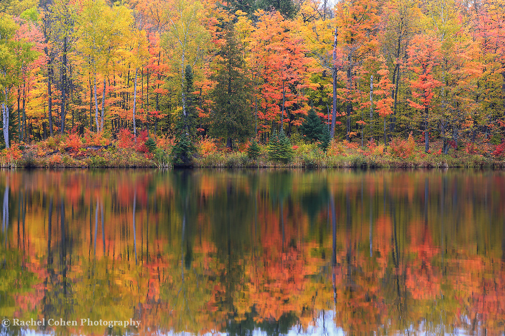 &quot;Lake Plumbago Autumn&quot;<br /> <br /> On a misty and foggy day the fall colors really pop in the forest around Lake Plumbago!