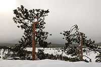 Winter in Rocky Mountain NP. Image taken with a Nikon D2xs and 17-35 mm f/2.8 lens (ISO 100, 17 mm, f/11, 1/125 sec)