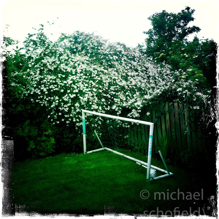Flowers and goals..Hipstamatic images taken on an Apple iPhone..©Michael Schofield.