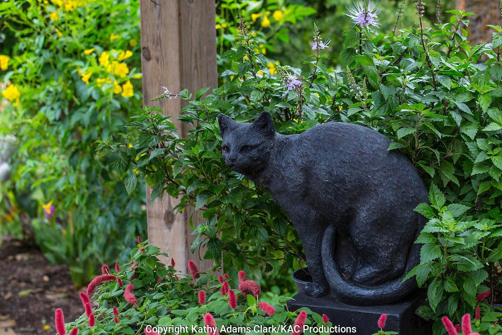 Statue of a black cat, cat's whisker, Garden, Houston, late summer, Texas.