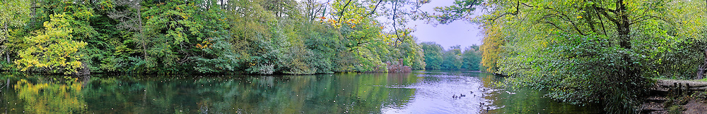 A panorama of a rural lake in Sussex, England.
