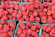 Salinas Valley Raspberries, Old Monterey Farmers Market, California
