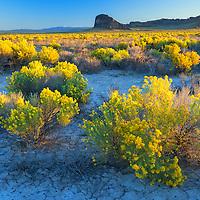 USA,Oregon, Central Oregon, Fort Rock ,Fort Rock State Natural Area.