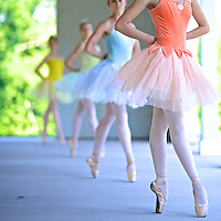 Connecticut Ballet ballerinas in colorful tutus at Parmelee Farm.