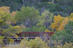 A red bridge set against the green and yellow colors of fall in Zion National Park, Utah.