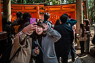 Always time for a selfie.  Two tourists, two of many, stop in front of a double tunnel of vermillion torii gates, there are thousands of them here.  Fushimi Inari Taisha Shrine Shrine, Kyoto, Japan.