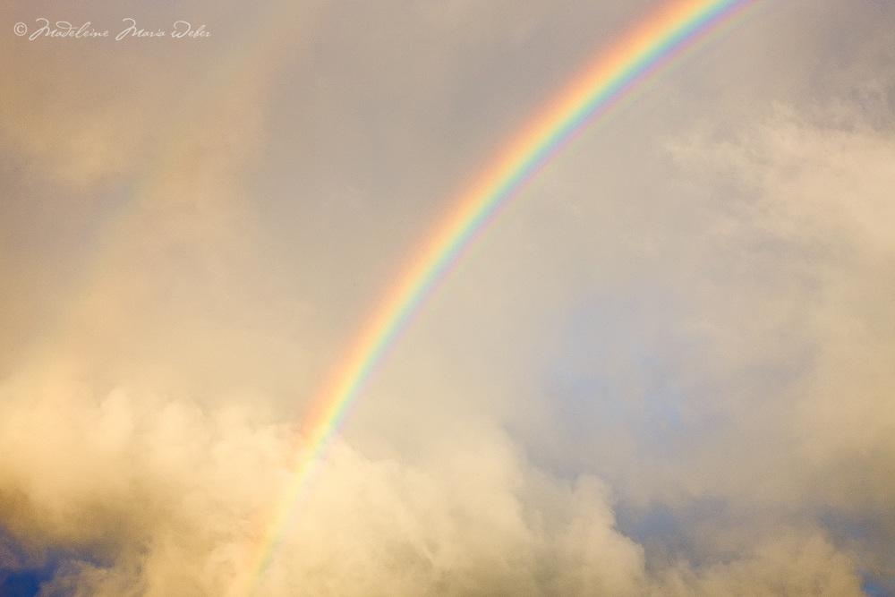 Powerful Rainbow Ireland / rb018