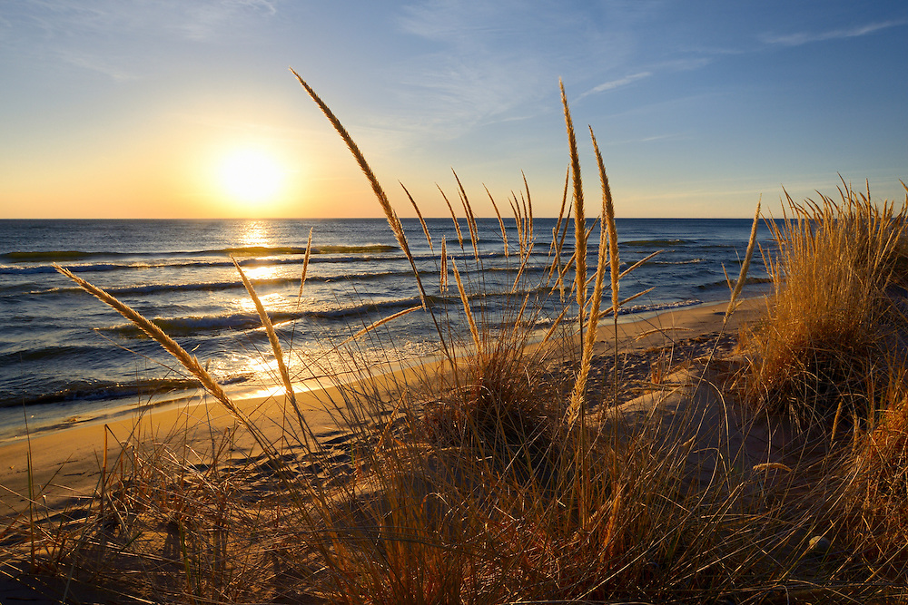 A warm breeze bends the dune grass on the Lake Michigan shore ~ near Grand Haven, Michigan
