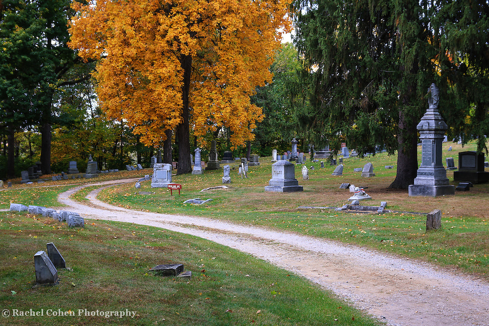 &quot;Highland Ave&quot;<br /> <br /> A curve along Highland Ave in Highland cemetery during autumn!