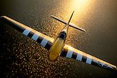 P-51D Lou IV
