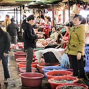 Phonsavan Morning Market / Plain of Jars / Laos